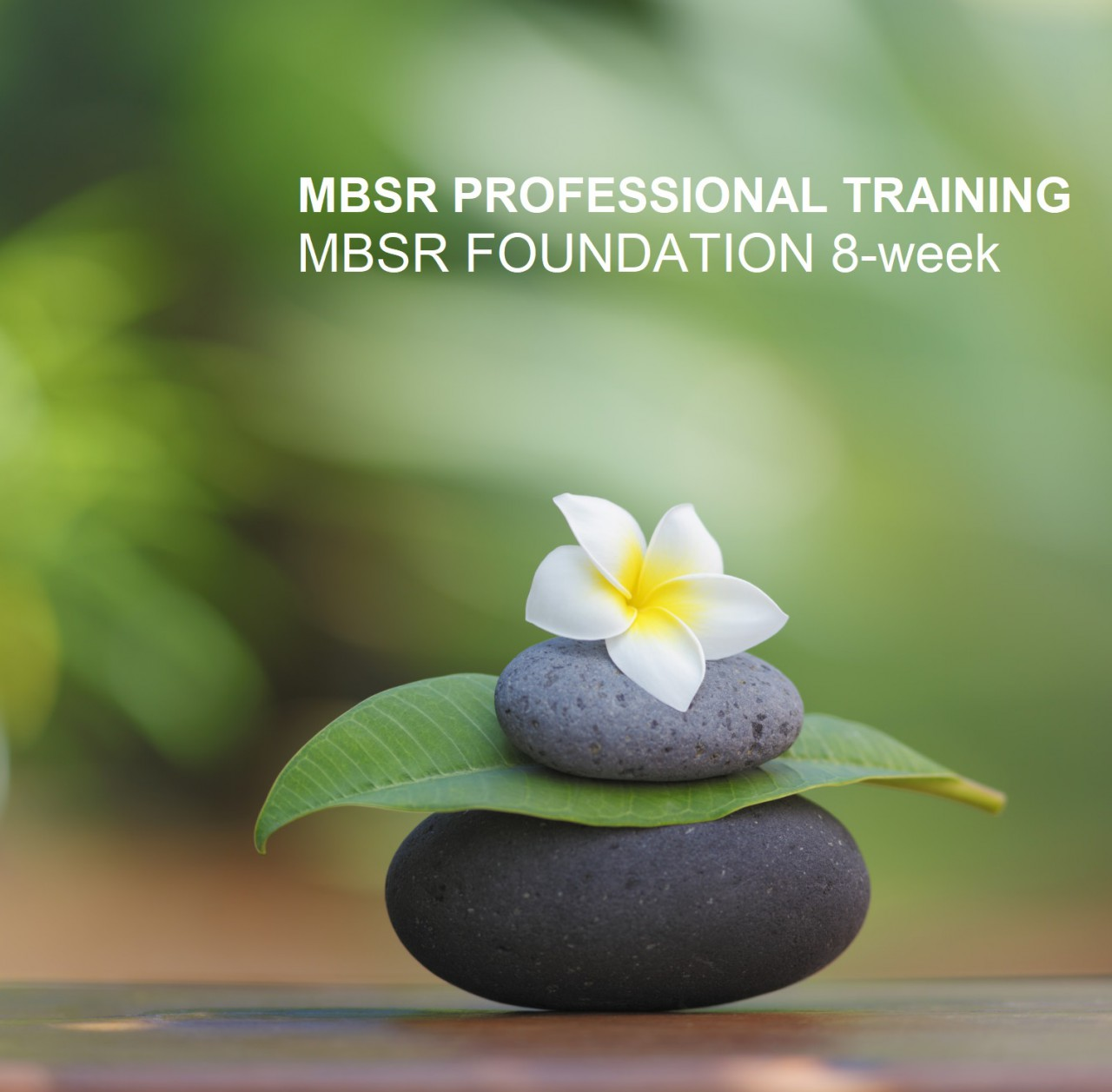 MBSR_TRAINING_FOUNDATION_8-WEEK.jpg