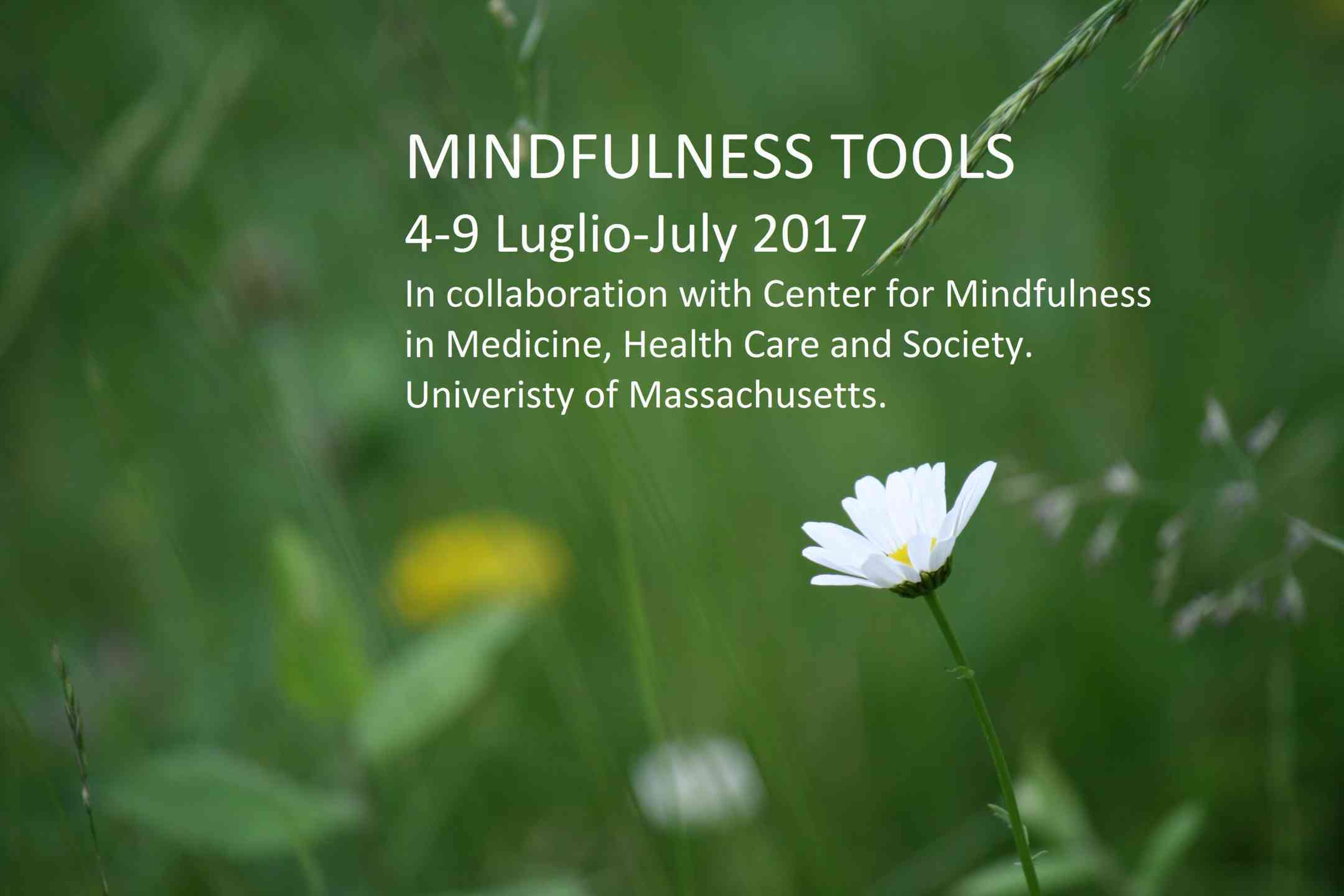 MINDFULNESS_TOOLS_PICTURE_(FILEminimizer).jpg